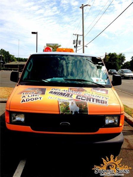 Ford cargo van wraps